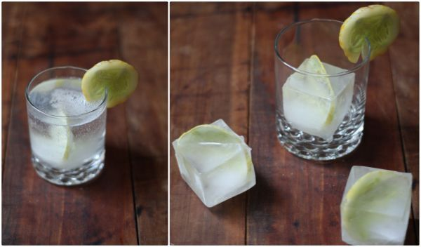 Gin & Tonic Ice Cubes