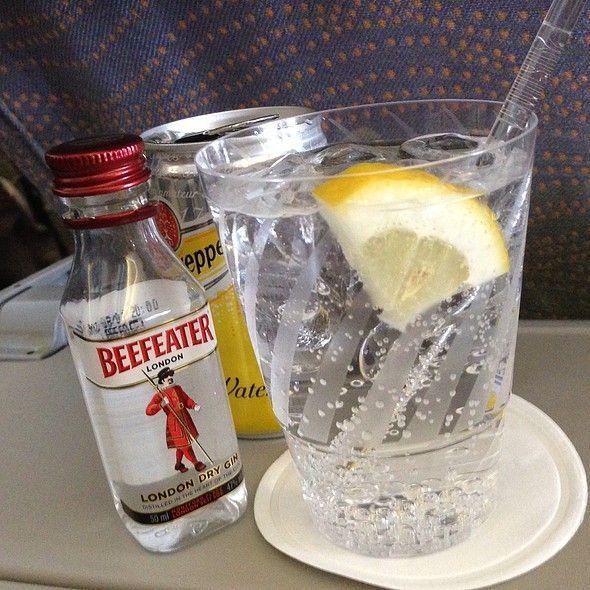 plane-gin