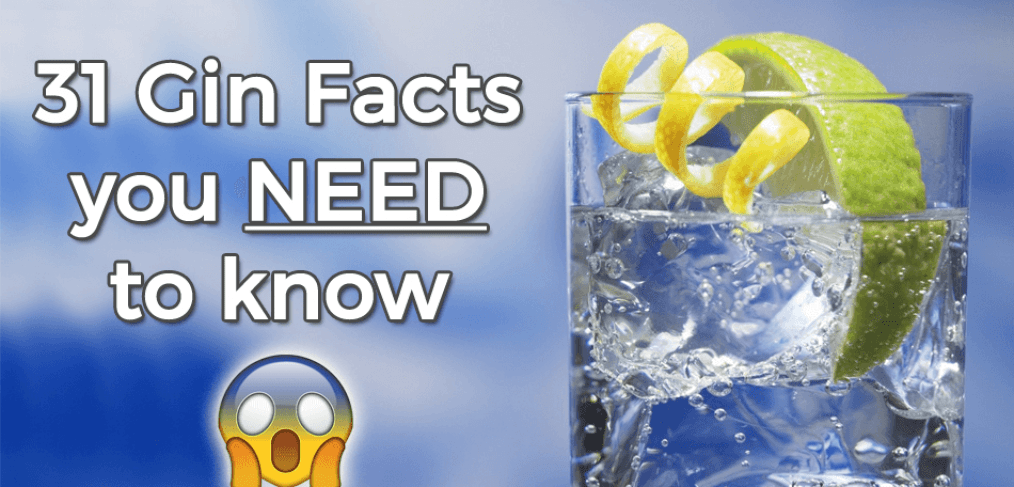 Gin Facts