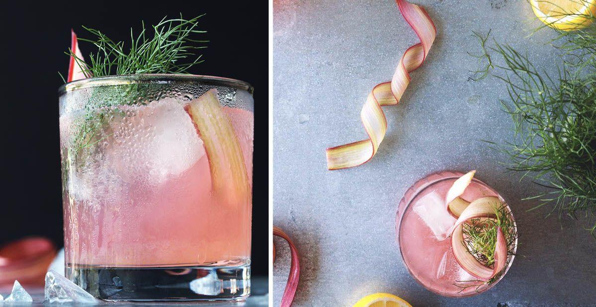 Rhubarb, Fennel & Vermouth Gin Cocktail