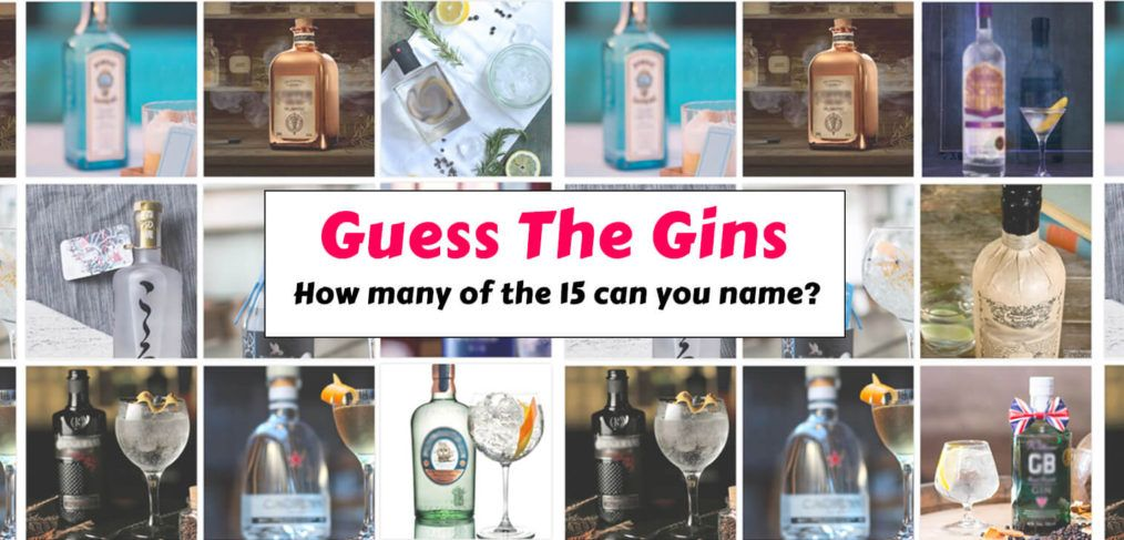 Guess The Gins