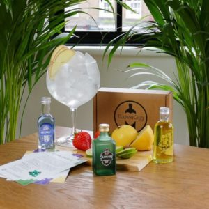 Fruity Gins Tasting Gift Set