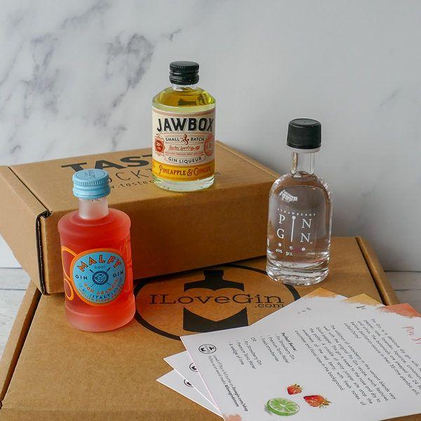 3 Fruity Gins Tasting Gift Set