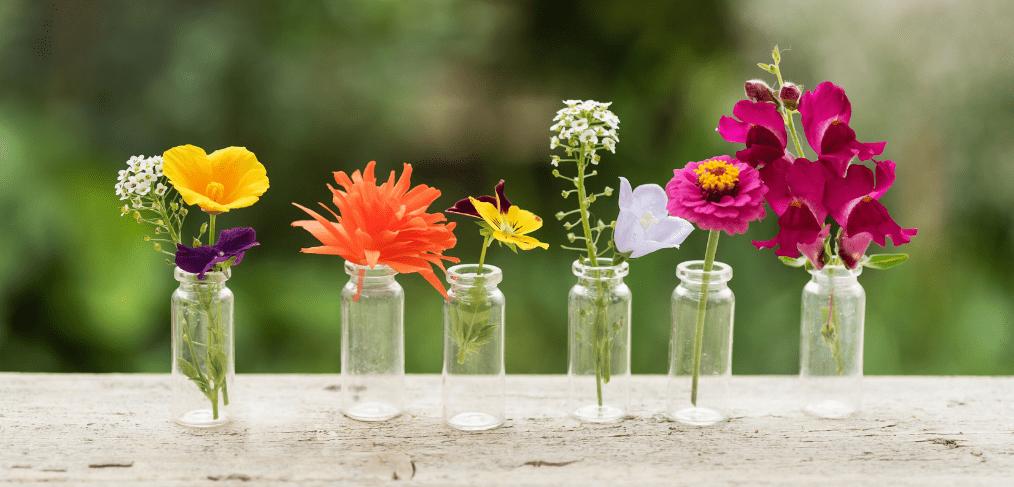 empty-gin-bottles-ideas