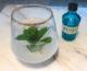 Wessex Gin Mojito