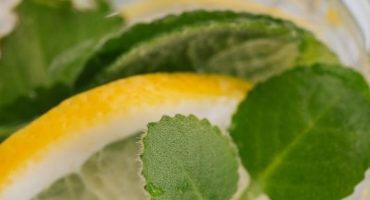 Gin-with-lemon-and-mint